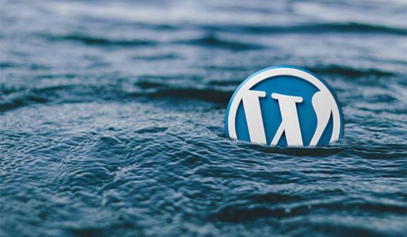 wordPress-for-marketing